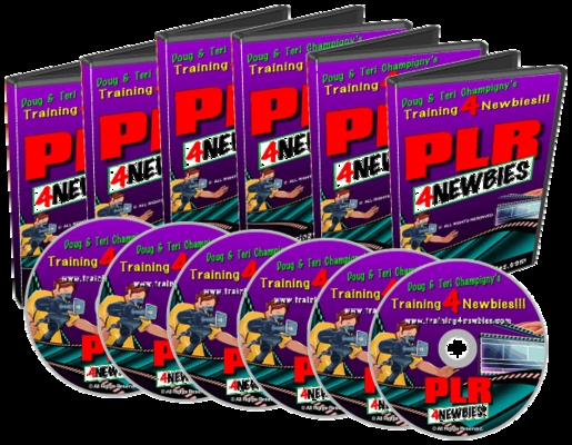 Product picture PLR for Newbies Video Series - Internet Marketing Video